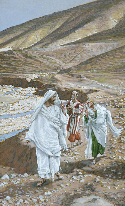 Calling Andrew Painting - The Calling Of St. Andrew And St. John by Tissot