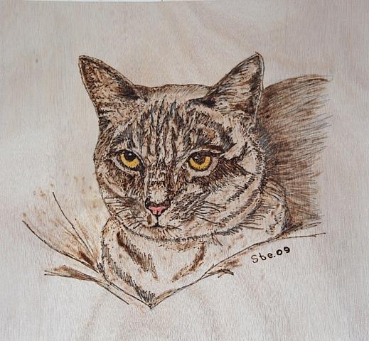 Landscape Pyrography - The Cat by Steven Steven