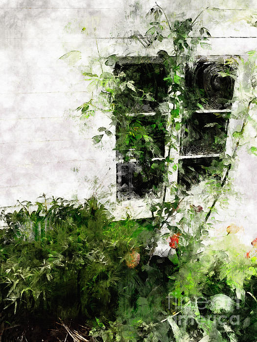 Window Photograph - The Climb by Claire Bull