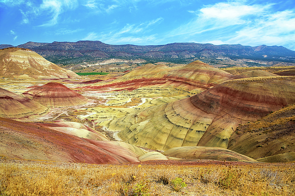 Painted Hills Photograph - The Colorful Painted Hills In Eastern Oregon by David Gn