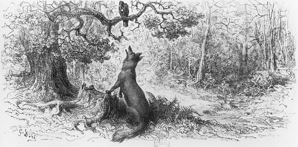 The Crow And The Fox Drawing - The Crow And The Fox by Gustave Dore