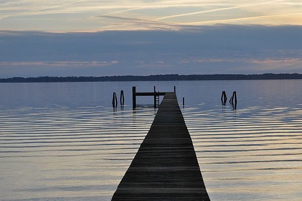 Docks Photograph - The Dock by Tiffney Heaning