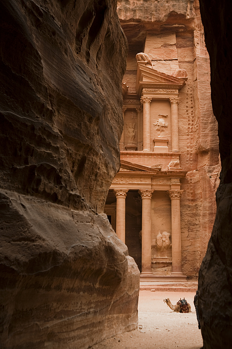 Petra Photograph - The Famous Treasury With A Camel by Taylor S. Kennedy
