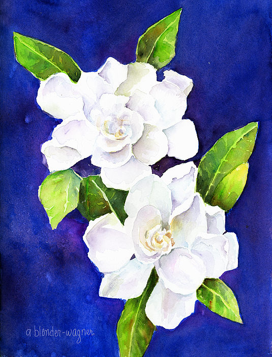 Flower Painting - The Fragrant Gardenia by Arline Wagner
