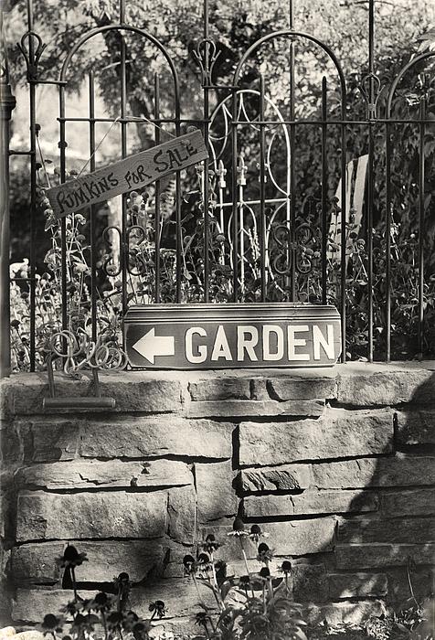 Garden Photograph - The Garden Gate by Jim Furrer