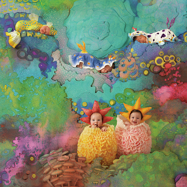Under The Sea Photograph - The Great Barrier Reef by Anne Geddes