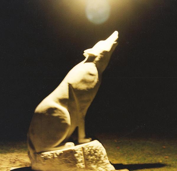 Wolf Sculpture - The Guardian by Paul Shier