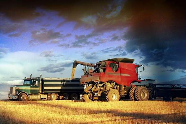 Axial Flow Photograph - The Harvest Run by Myrna Migala
