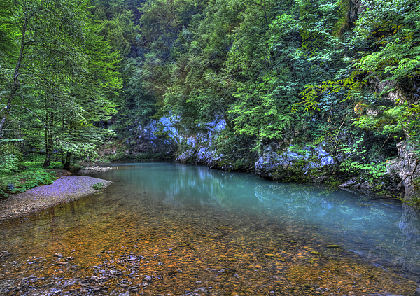 Croatia Photograph - The Kupa River by Don Wolf