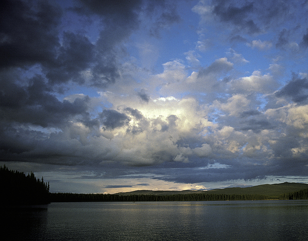 Canada Photograph - The Land Of Loon by Charlie Osborn