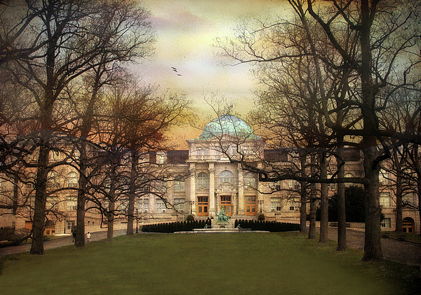 Architecture Photograph - The Library by Jessica Jenney