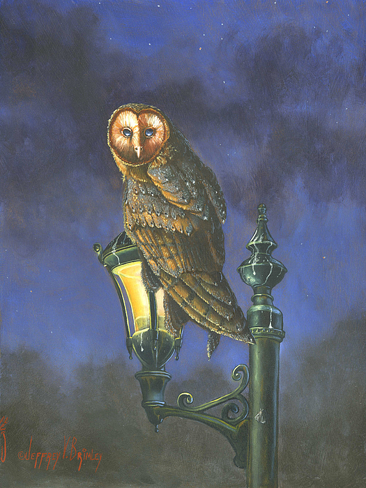 Barn Owl Painting - The Night Watch by Jeff Brimley