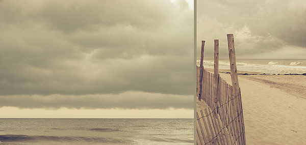 Diptych Photograph - The Ocean Speaks My Truths by Dana DiPasquale