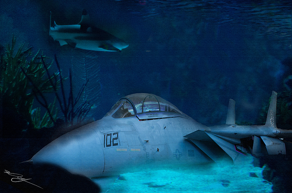 Seaworld Digital Art - The Old Guard For The Tomcat by Mark Vizcarra