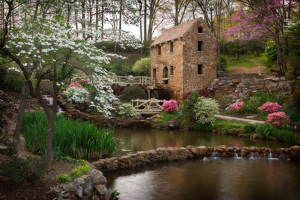 Mill Photograph - The Old Mill by Jonas Wingfield