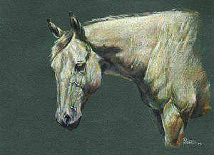 Horse Painting - The Only Mare There by Jenifer Trottier
