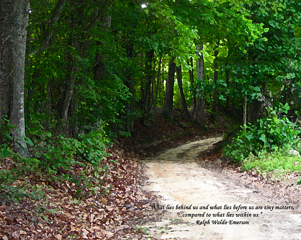 Path Photograph - The Path by Ginger Howland