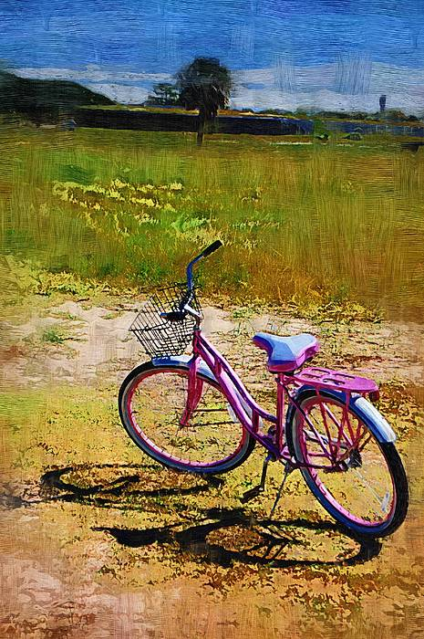 The Pink Bike Photograph by Donna Bentley