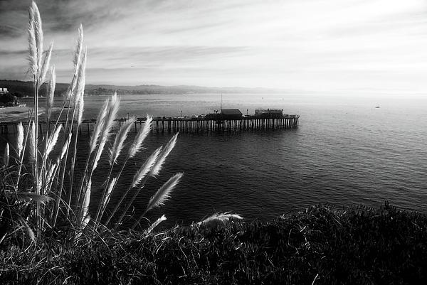 Southwest Photograph - The Reach by Wayne Stadler
