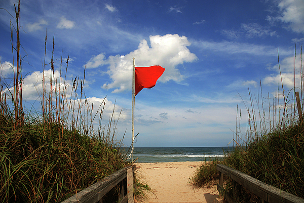 Red Flag Photograph - The Red Flag by Susanne Van Hulst