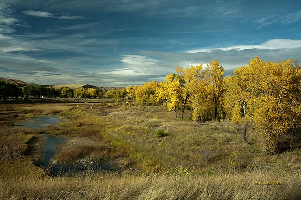 Lethbridge Photograph - The River Bottom by Tom Buchanan