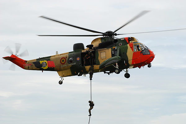 Adults Only Photograph - The Sea King Helicopter Of The Belgian by Luc De Jaeger