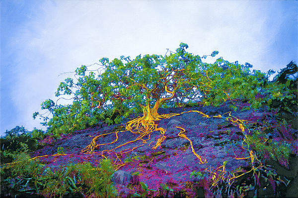 Tree Painting - The Stand by David Clark
