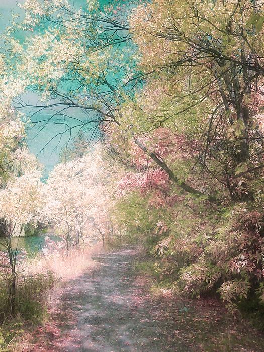 Pastel Photograph - The Walkway Of Forgotten Dreams by Tara Turner