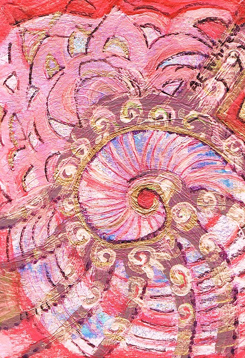 Shell Painting - The Whirling Shell  by Anne-Elizabeth Whiteway