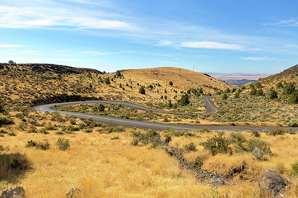 Road Photograph - The Winding Road In Central Oregon by David Gn