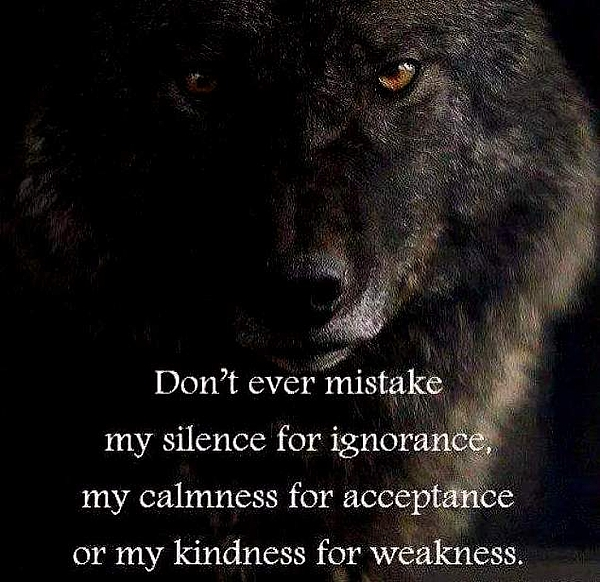 Wolf Photograph - The Wolf Knows Nfs by VIVA Anderson