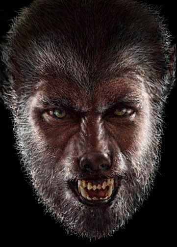The Wolfman Digital Art by Garry Limuti