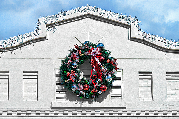 Wreath Photograph - The Wreath by Christopher Holmes