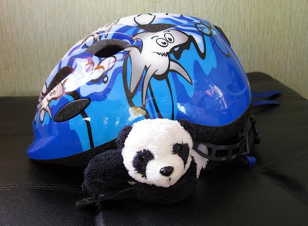 Baby Panda Photograph - This Helmet Is So Heavy Ugh by Ausra Huntington nee Paulauskaite