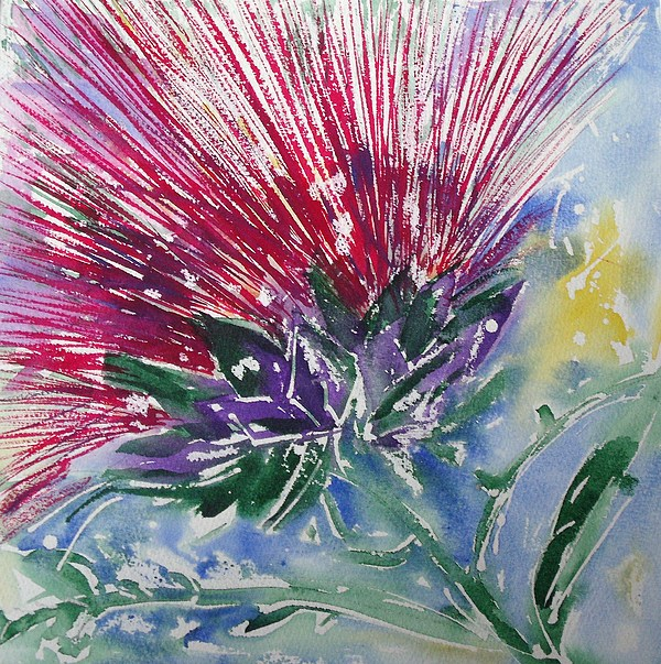 Thistle Painting - Thistle by June OConnell