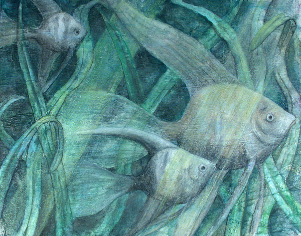 Angel Fish Painting - Three Fish by Sandy Clift
