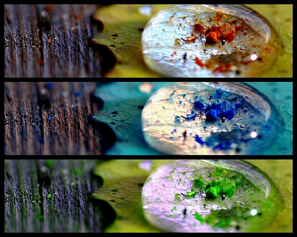 Water Drops Photograph - Three Fold Being by Bianca Van Heumen