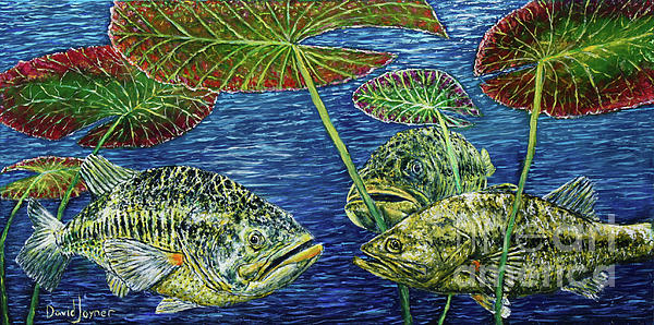 Fish Painting - Three Musketeers by David Joyner