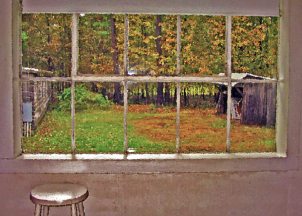 Window Photograph - Through The Glass by Steve Ohlsen