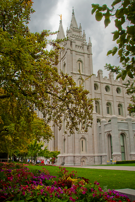 Temples Photograph - Through The Trees by La Rae  Roberts