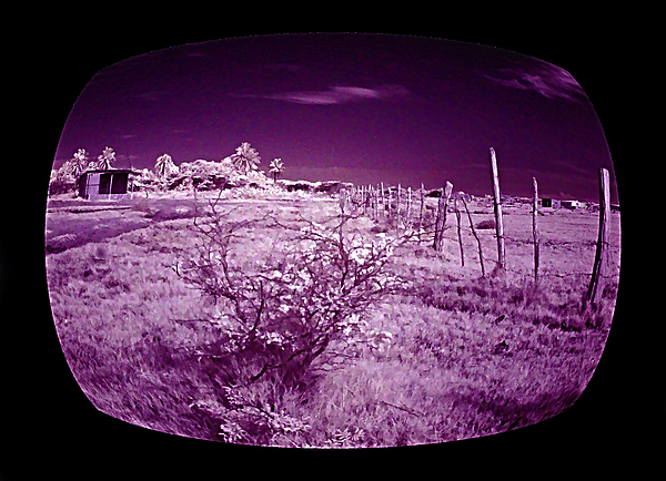 Infrared Photograph - Through The Tv by Galeria Trompiz