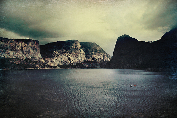 Hetch Hetchy Photograph - Through Thick Or Thin by Laurie Search