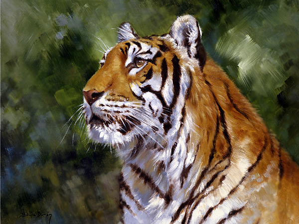 Wildlife Painting - Tiger Alert by Silvia  Duran