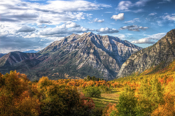 Horizontal Photograph - Timpanogos From Cascade Meadows by William Church - Summit42.com