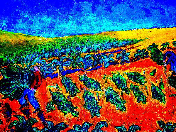 Tobacco Painting - Tobacco Harvest by Kent Whitaker