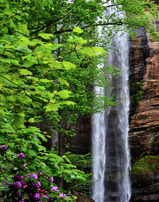 Waterfall Photograph - Toccoa Falls In Georgia by Eva Thomas