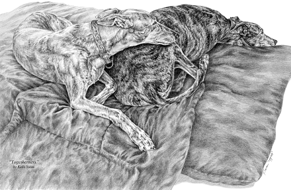 Greyhound Drawing - Togetherness - Greyhound Dog Art Print by Kelli Swan