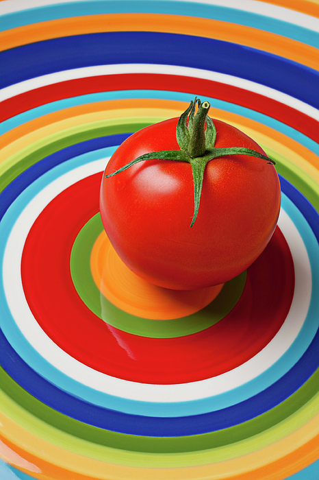 Plates Photograph - Tomato On Plate With Circles by Garry Gay