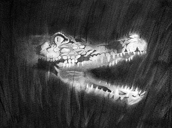 Gator Drawing - Toothy Smile by Joseph Palotas