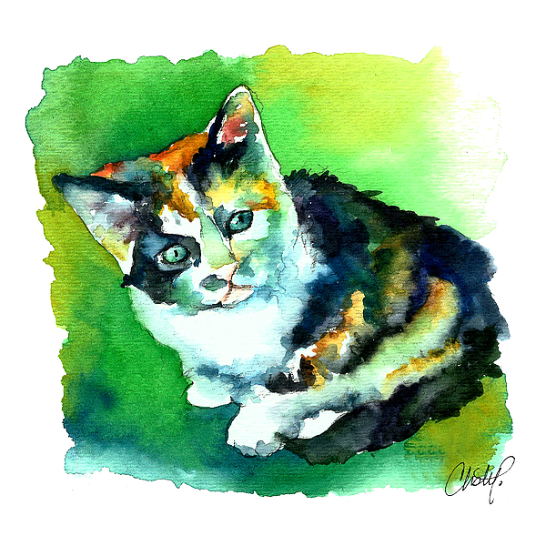 Cat Painting - Tortoise Shell Kitten by Christy  Freeman